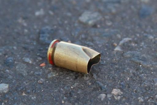 Resultado de imagem para ilustrativa de arma de fogo